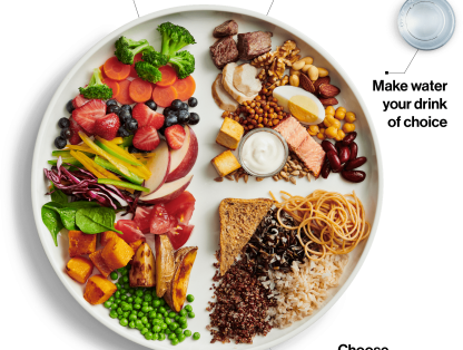New Canada Food Guide, plant-based protein